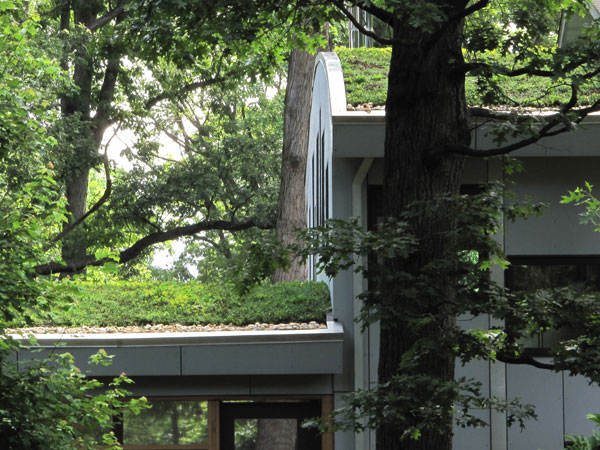 Curved green roofs.