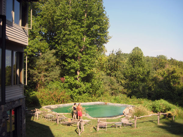 Pool and forest in the back of the house.