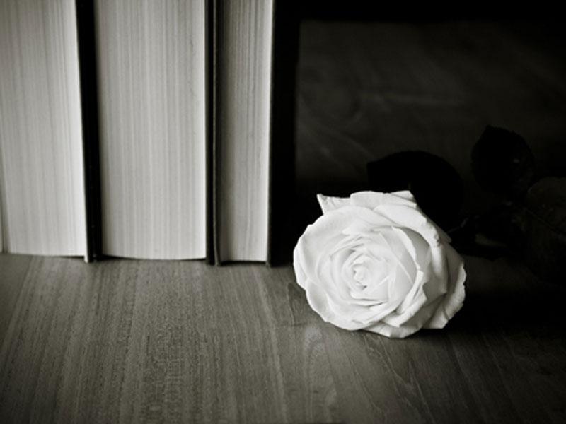 white rose on floor